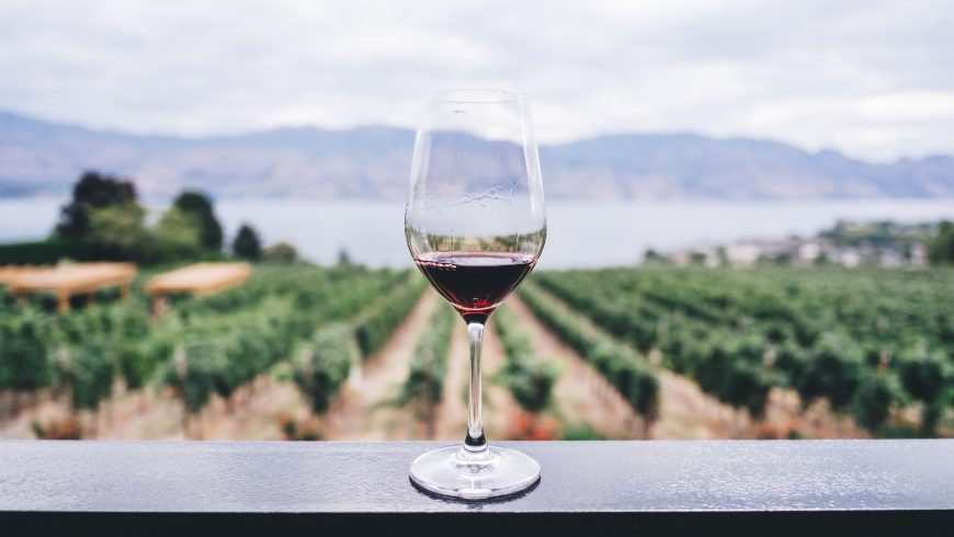 A glass of wine among vineyards