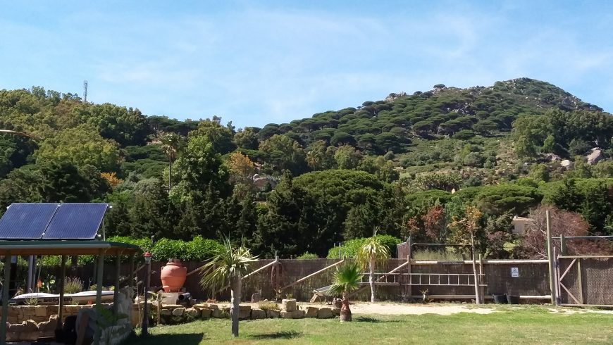 Creating an eco-glamping in Andalucia