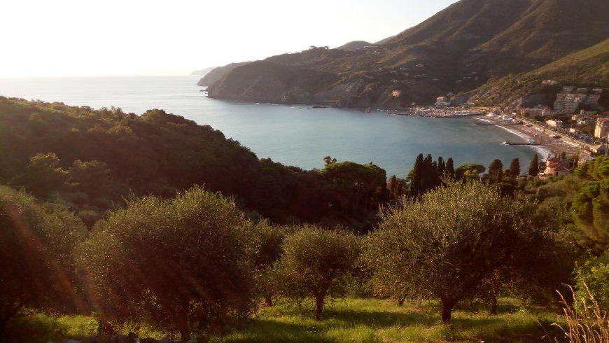 Levanto, panoramic view