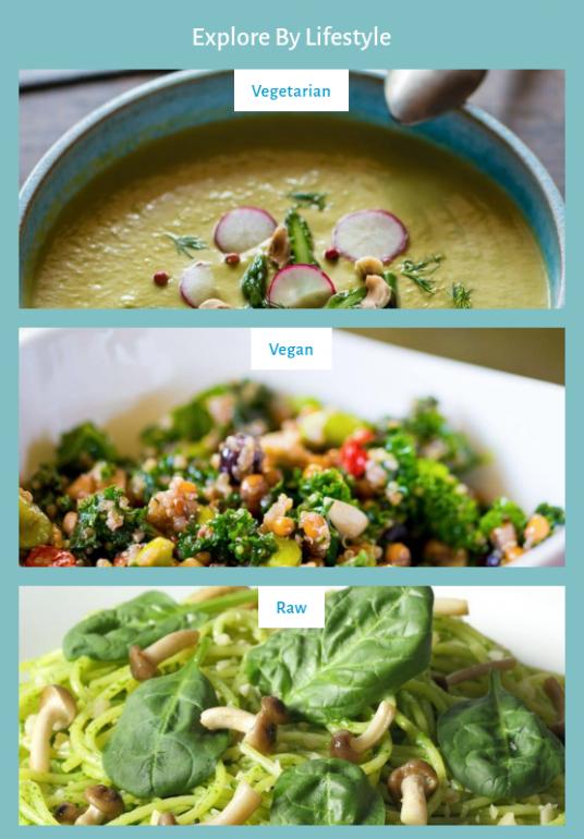 VegVisit app for vegans