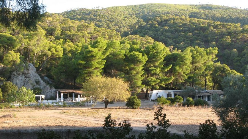 A new life on a farm in Greece