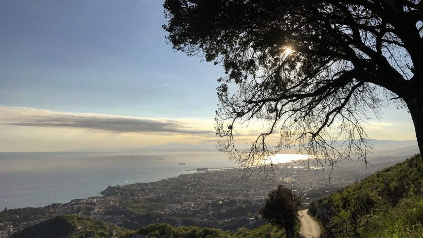 Genoa, panoramic view