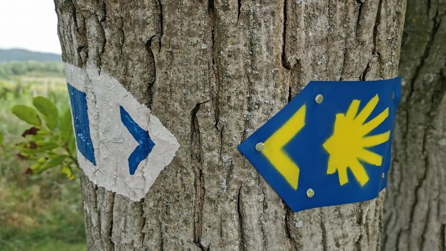 the yellow arrow and the stylized shell, marks of the path