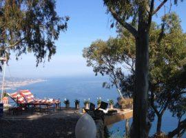 Aloe Arborescens on the Ligurian sea