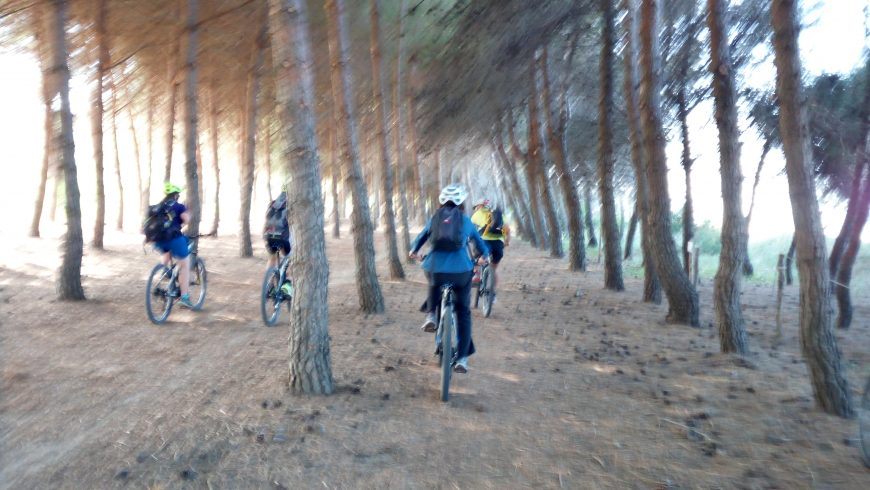 Torre del Cerrano Natural Park in e-bike