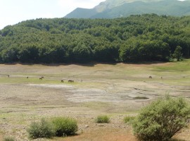 Tuscan-Emilian Apennines landscape