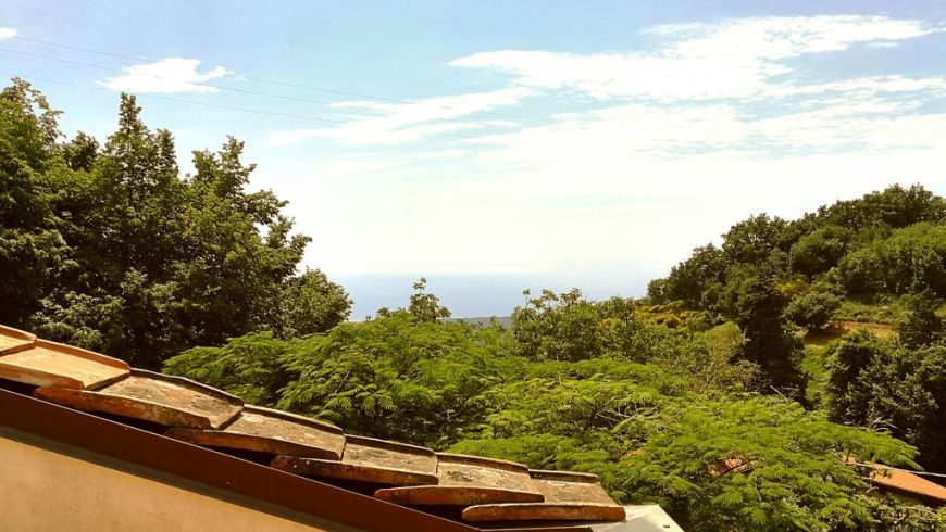 green accommodations in Pietrasanta
