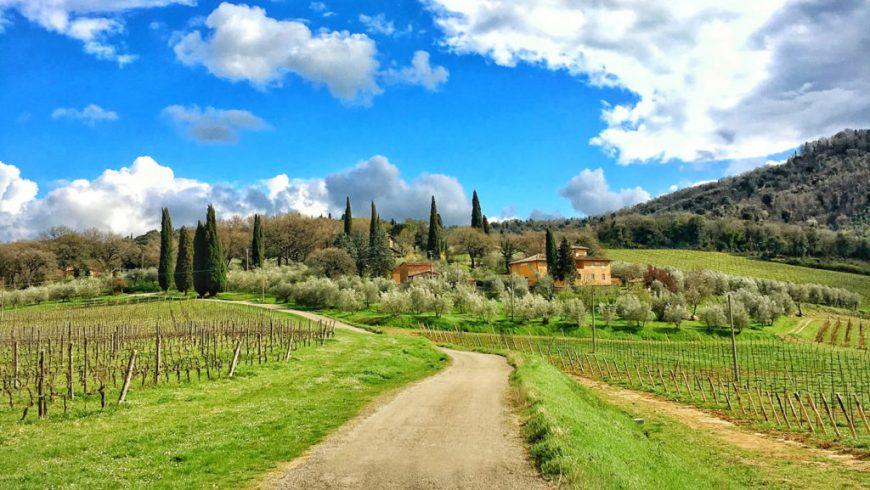 Via dell'Olio, Valdarno Bike Road