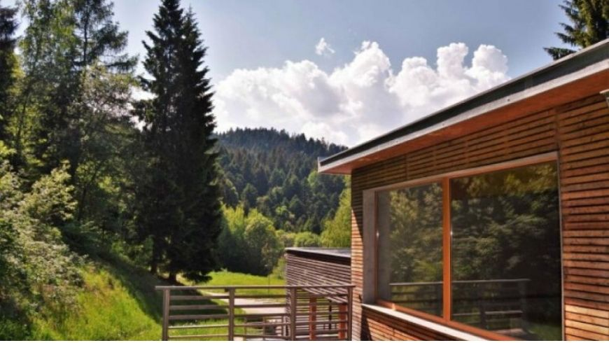 wooden chalet in the woods italy green