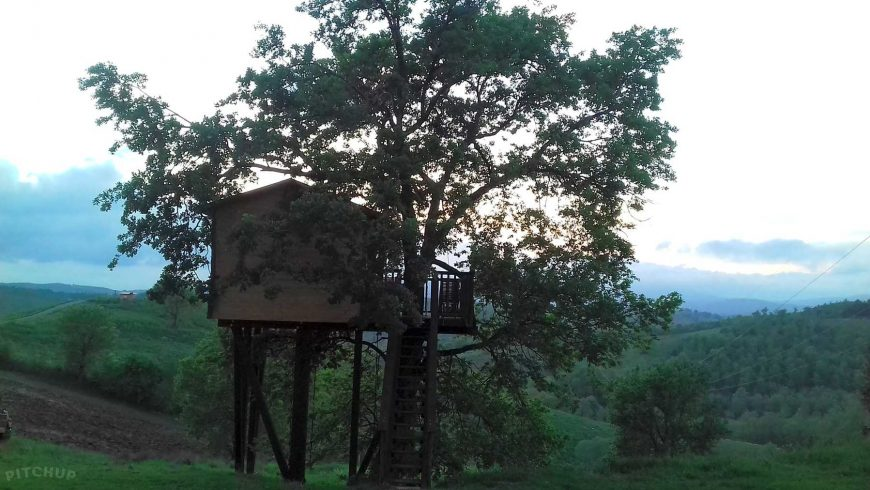 treehouse in the tuscan maremma
