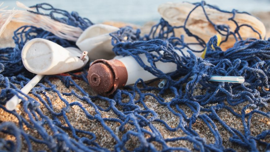 environment health pollution in the sea