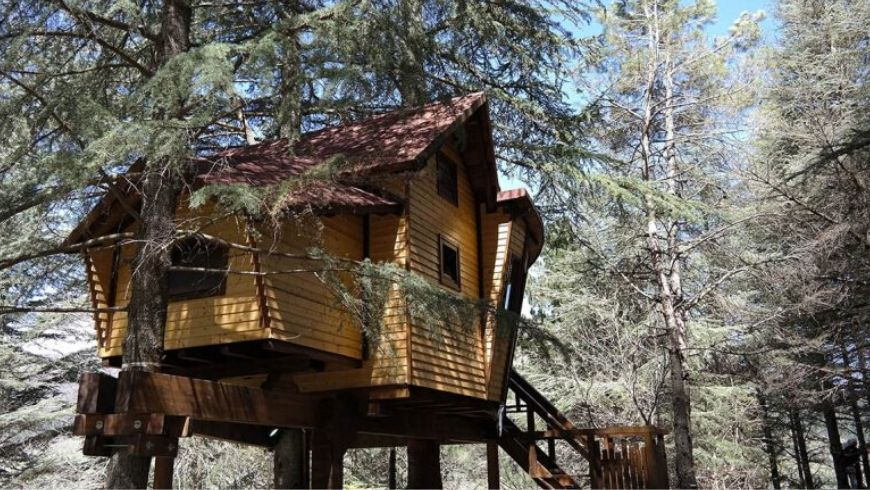 green treehouse in italy