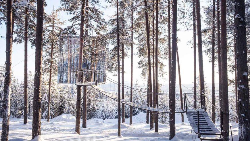 Tree Eco-Hotel