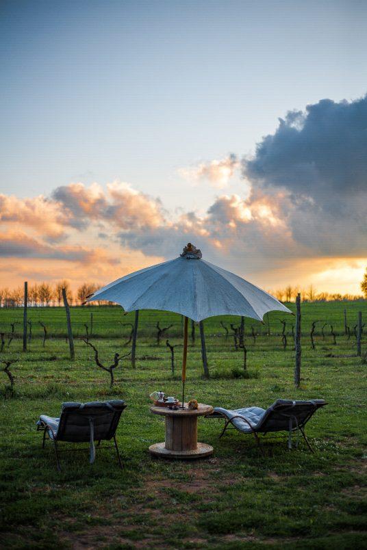 Holidays in nature, at the organic farm Sant'Egle, Tuscan Maremma