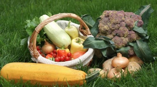 local and organic vegetables