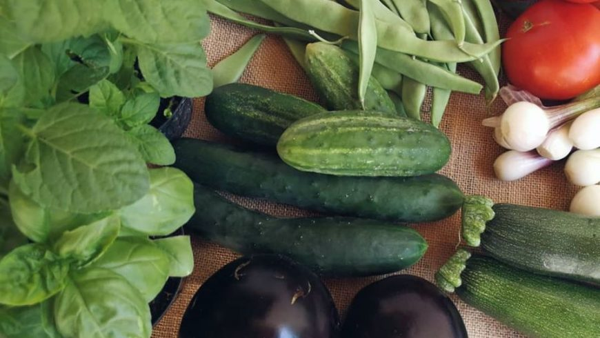 Eko Siljan organic food