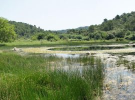Lastovo archipelago 2