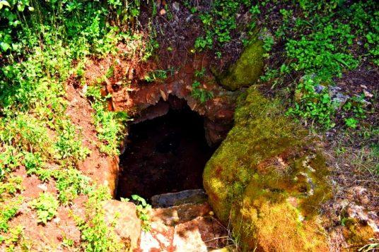 Natural water springs in Istria _Water spring Badavča