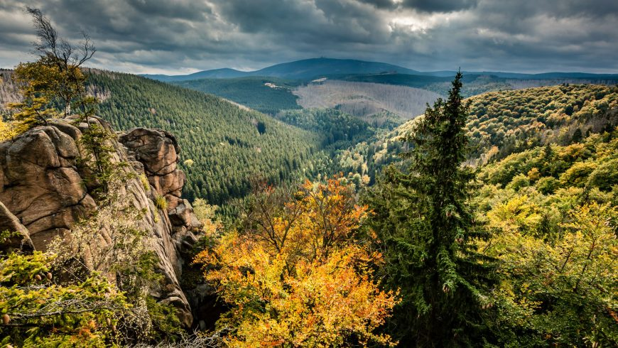 View to the Brocken - the highest mountain in the Harz (Photo: Mirko Lehmann)