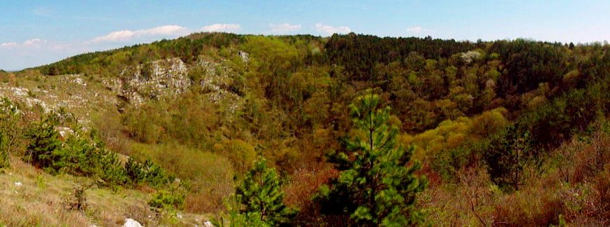 Istria hidden gems - Sopajac karst swallow hole