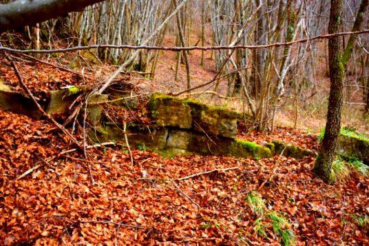 Zahej prehistoric settlment Istria