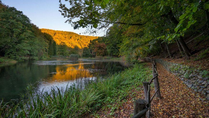 Nature park Papuk Croatia