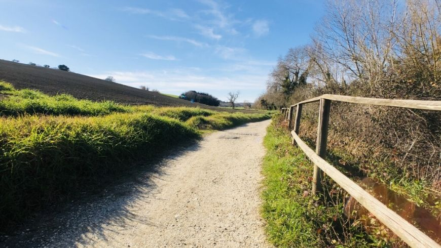 paths around farmhouse ritorno alla natura in italy on ecobnb
