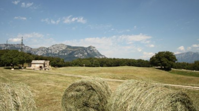 An organic farm in Trentino woods
