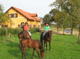 Goričko Landscape Park: find your stay at the Agritourism Farm Vrbnjak