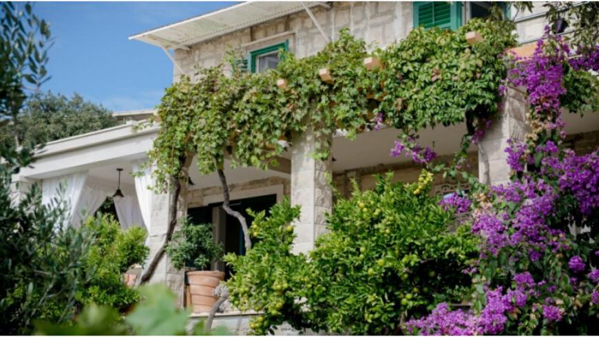 Brač island: discorver Jasna green apartments