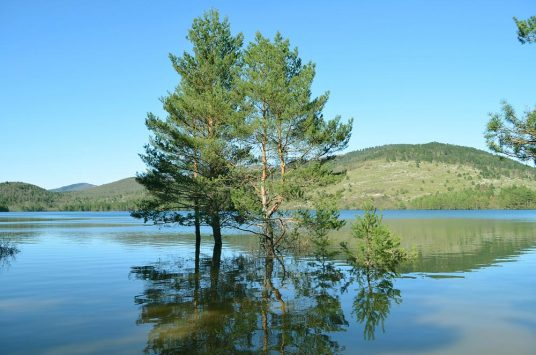 European Day of Parks: discover the Pivka Nature Park