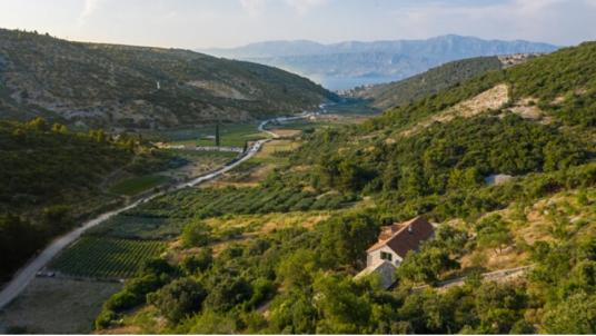 Top 5 eco-friendly and remote holiday homes on Brač island: discorver Villa Dol