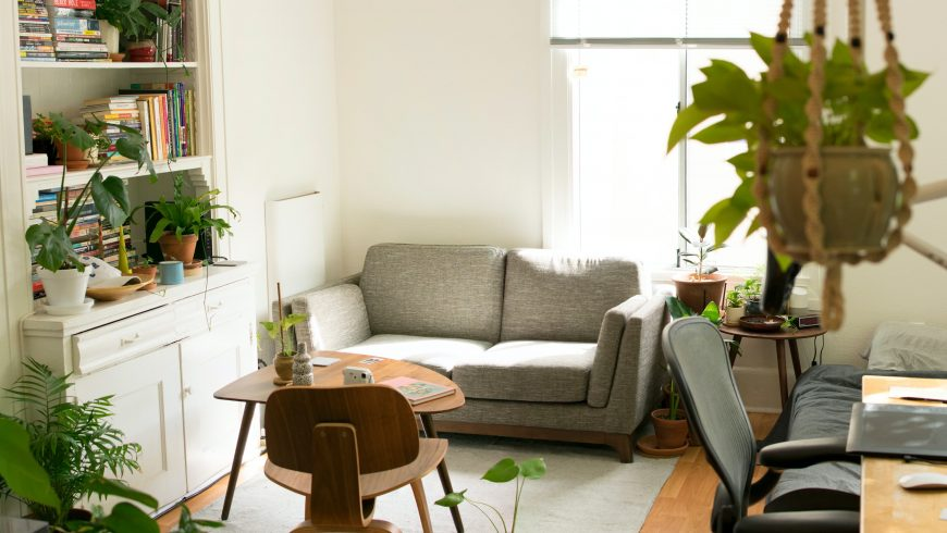 apartment with plants