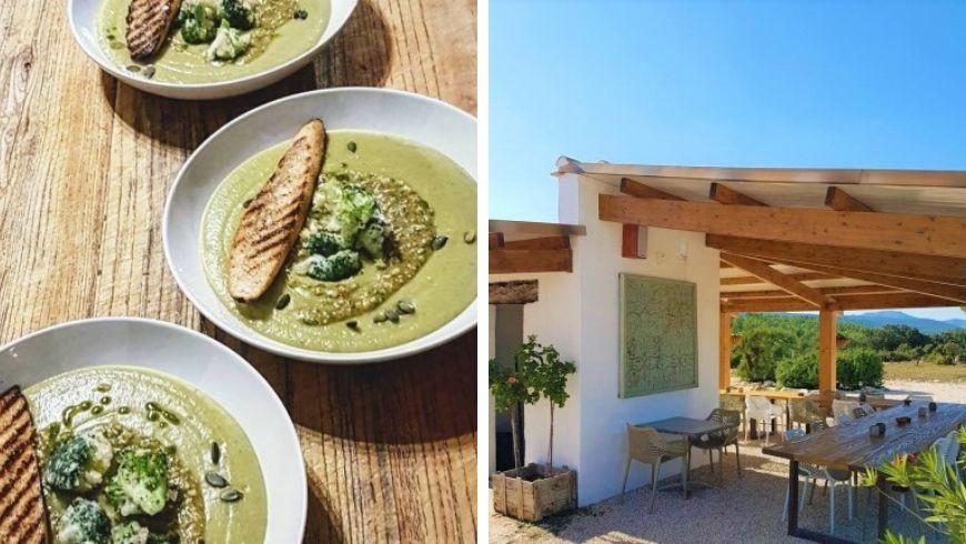organic food at casas benali spain ecobnb