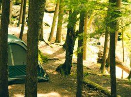 tent Eco Kamp Koren