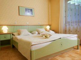 room Eco Thermal Spa Snovik