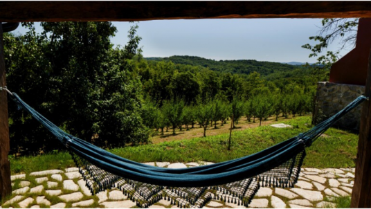 Lay and read in a hammock at the Ekodrom Estate