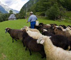 Rural Holidays in Slovenia