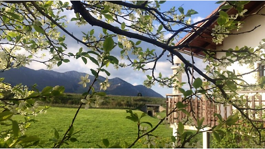 Enjoy a stunning terrace at the Hudičevec Vacation Farm