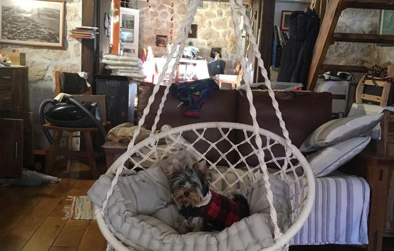 Dog-friendly eco villa Trogir