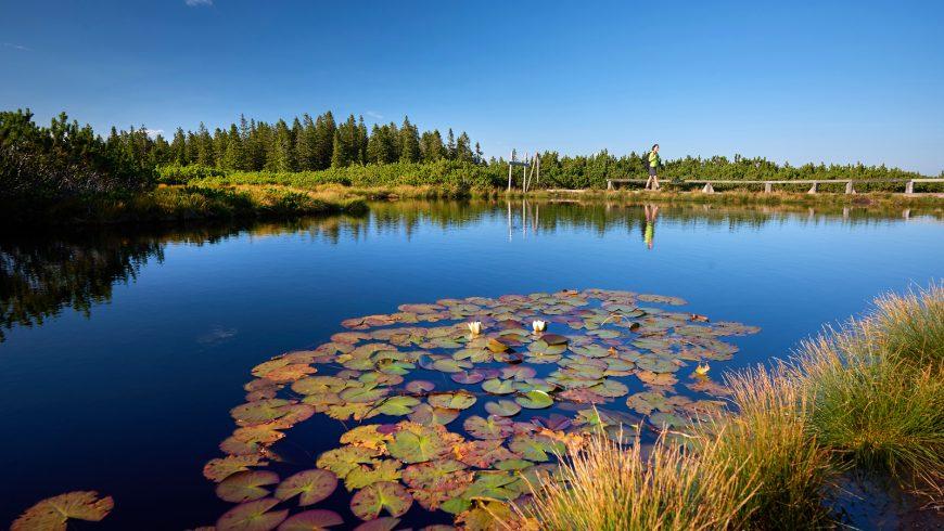 lovrenska jezera