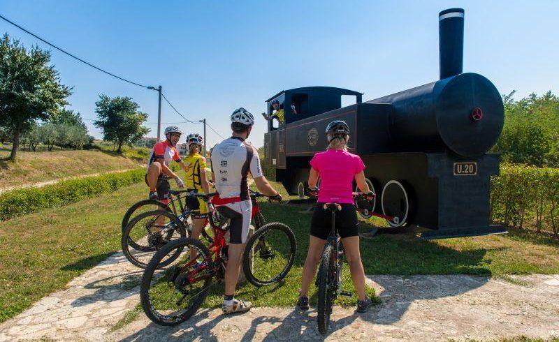 Vizinada old locomotive