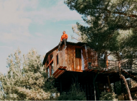 Have an eco-glamping experience in a tree house in the middle of nature