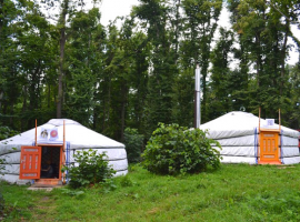 Have an eco-glamping experience in a yurt in the middle of nature