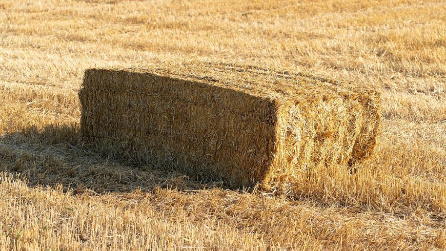Rectangular bale of straw on a field