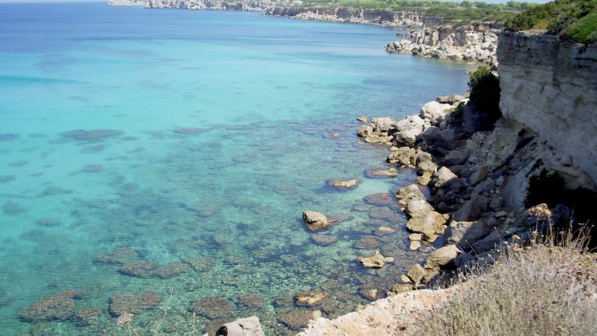 Western coast of PIanosa, Livorno