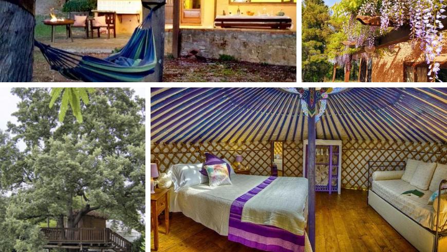 Yurta and tree house