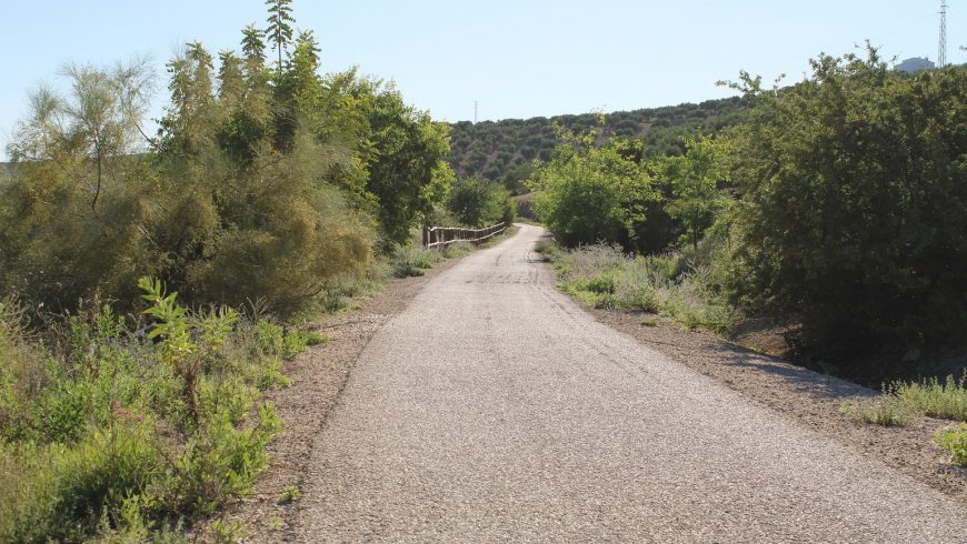 vias verdes