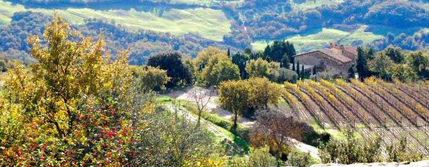Colours of the Val d'Orcia