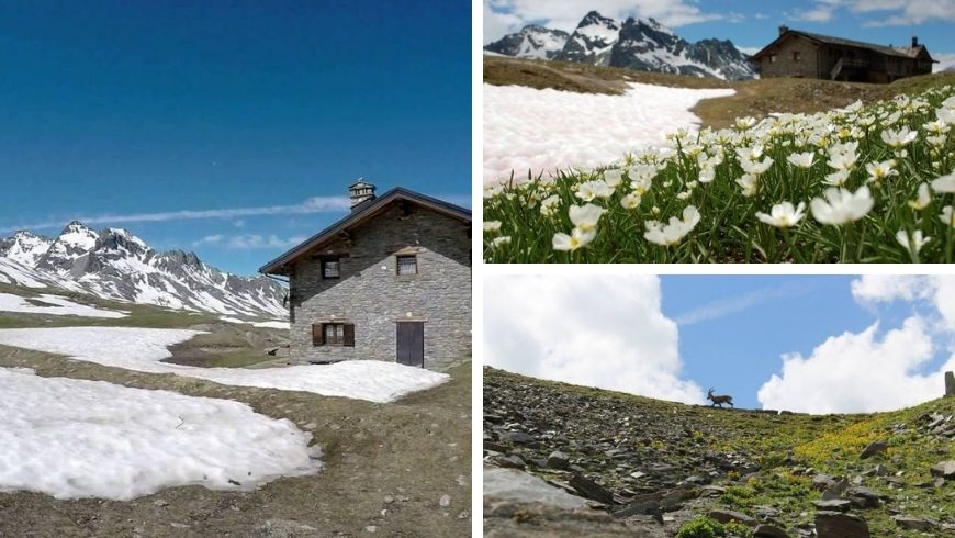The magic of the mountains in Cogne